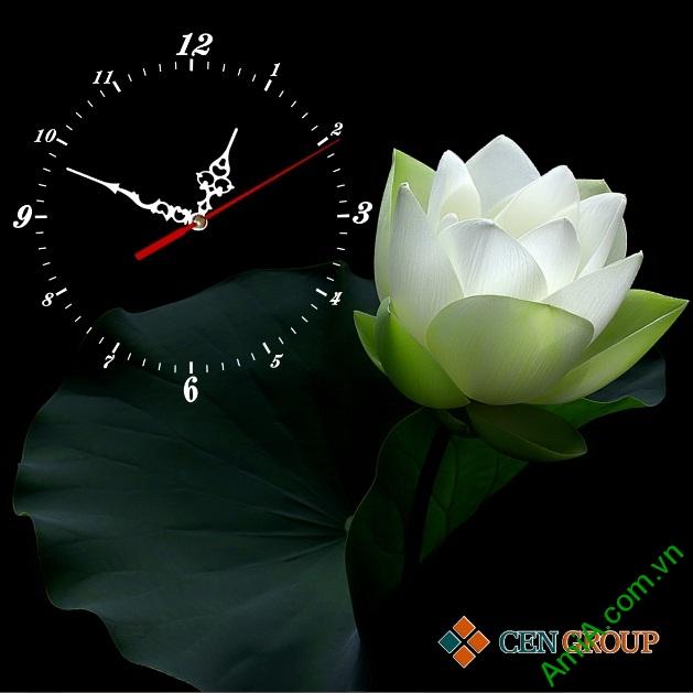 Tranh lịch đồng hồ hoa sen