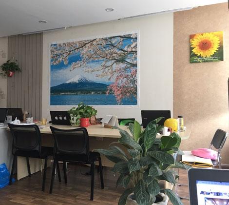 Tranh in canvas hoa anh đào trong văn phòng
