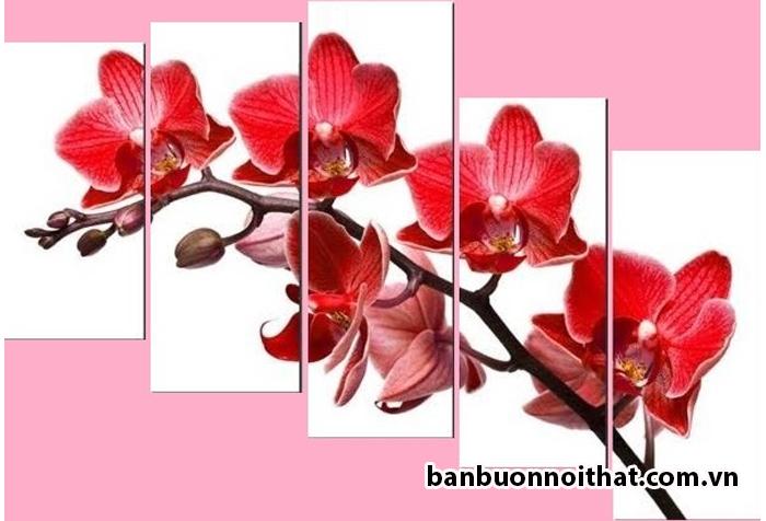 Tranh hoa lan đỏ là mẫu tranh hoa lan đẹp cá tính được nhiều khách hàng lựa chọn