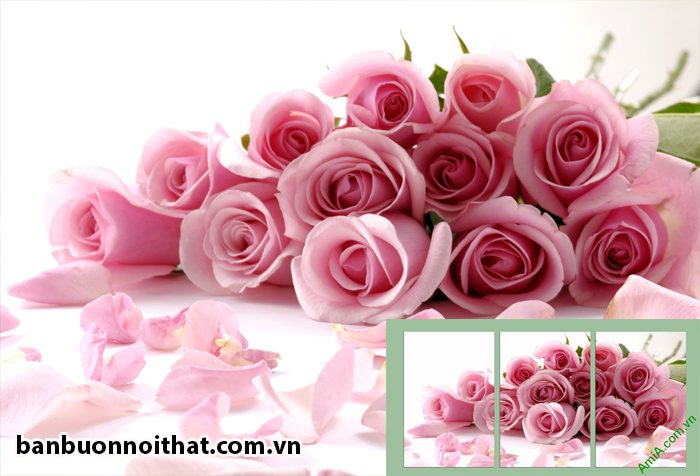 Bức ảnh hoa hồng sắc nét làm nên bức tranh ghép 3 tấm hoa hồng treo tường vô cùng lãng mạn