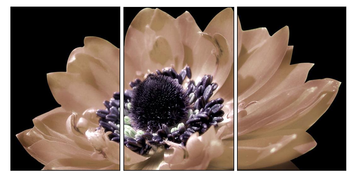 Tranh ghép hiện đại hoa đẹp trang trí phòng ngủ đẹp