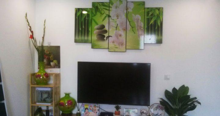 Mẫu tranh treo tại nhà khách, tranh trang trsi cùng ti vi
