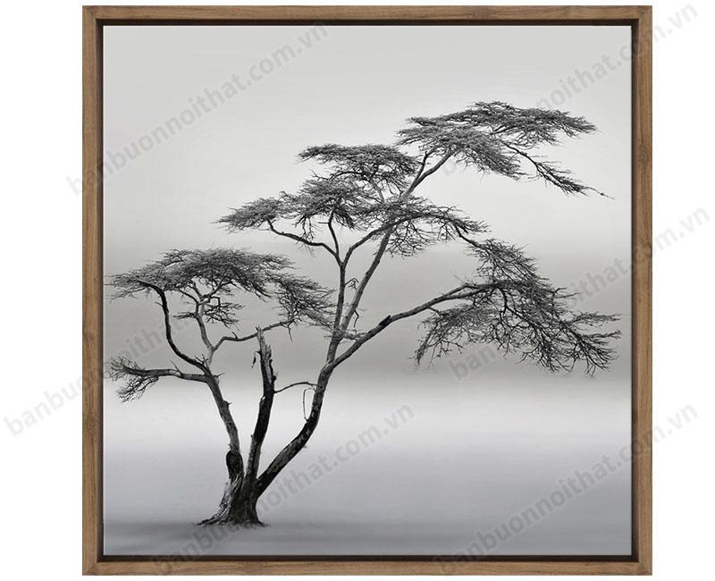 Tranh đen trắng nghệ thuật cây xanh in canvas có khung